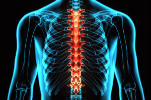 spinal cord x-ray